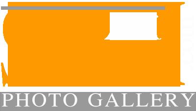 علی صارمی | Ali Saremi